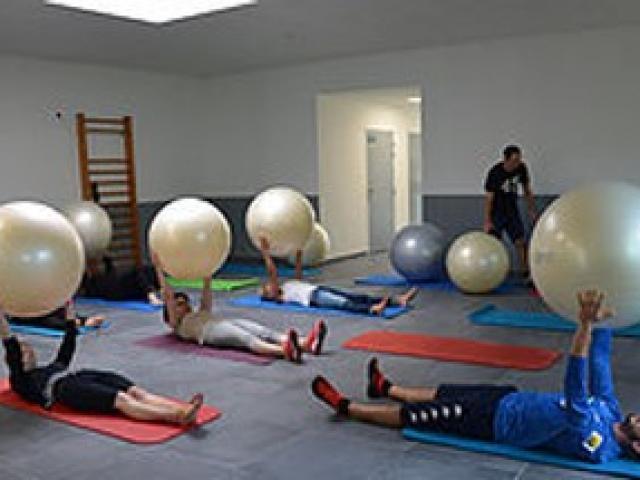 Swissball gym ballon